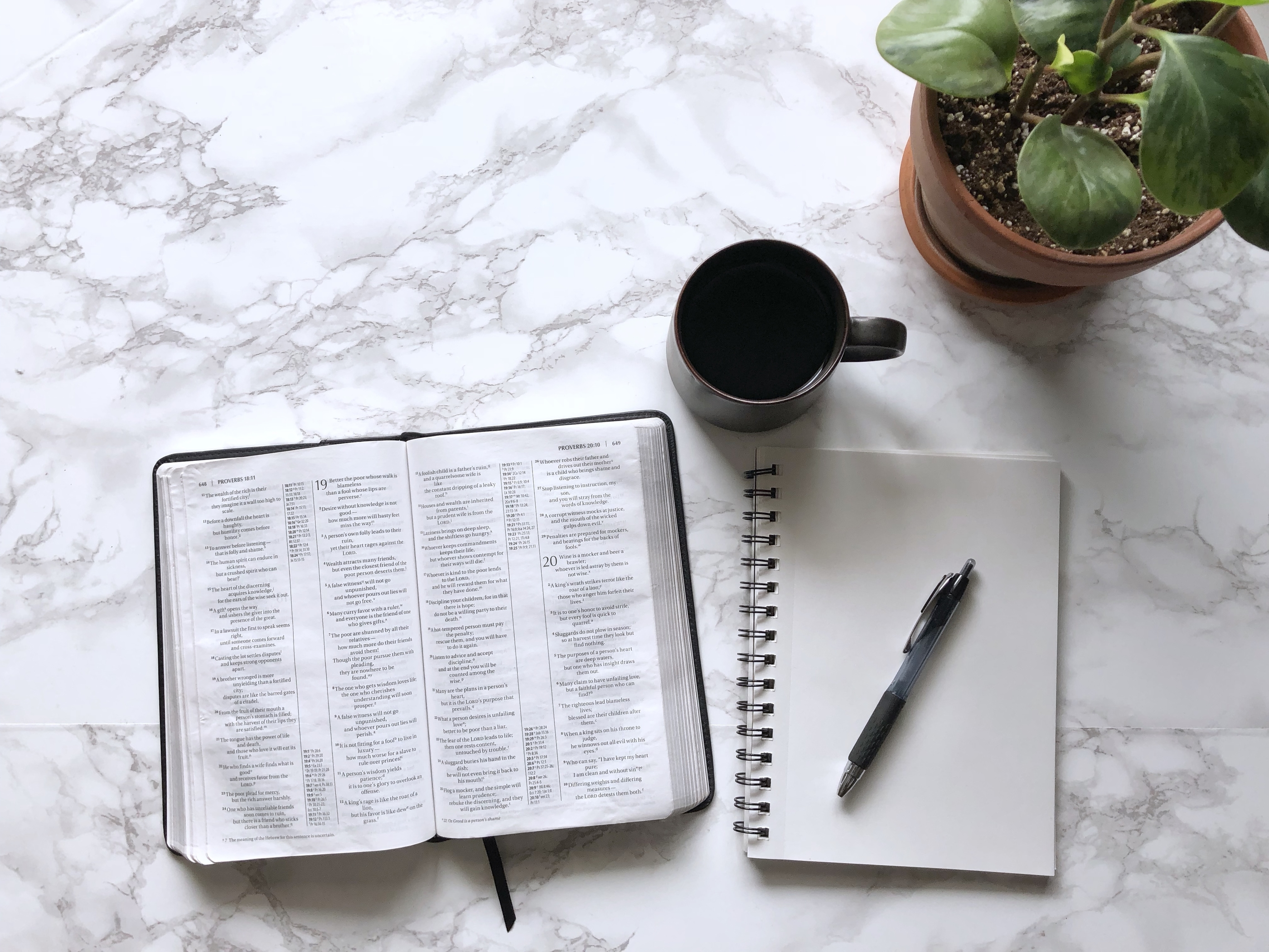 your-time-bible-study-Week-1